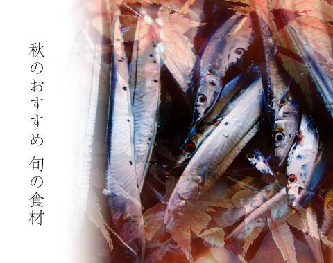 秋のおすすめ旬の鮮魚