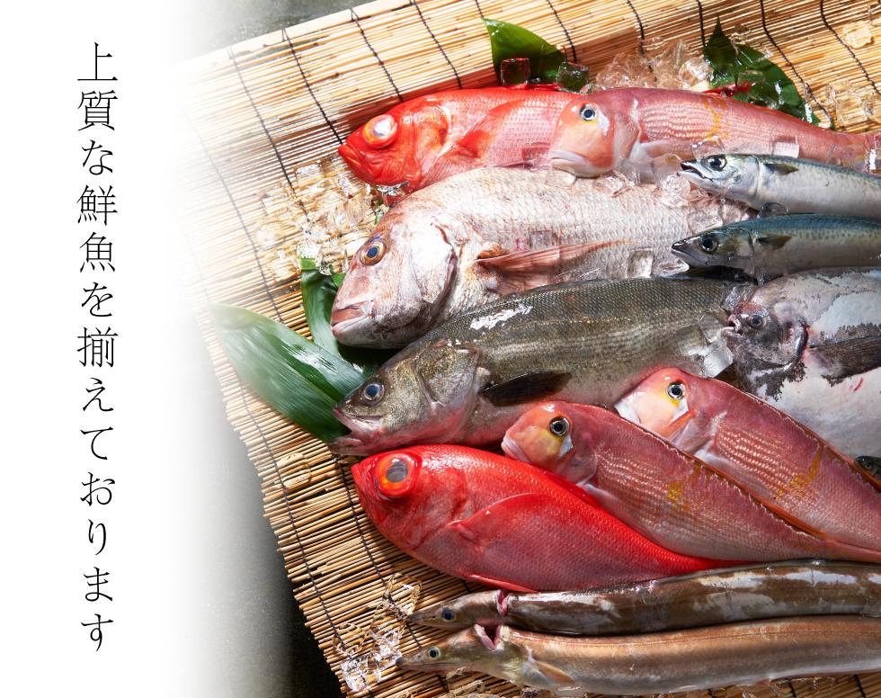 株式会社ふじわらでは、上質な鮮魚を揃えております